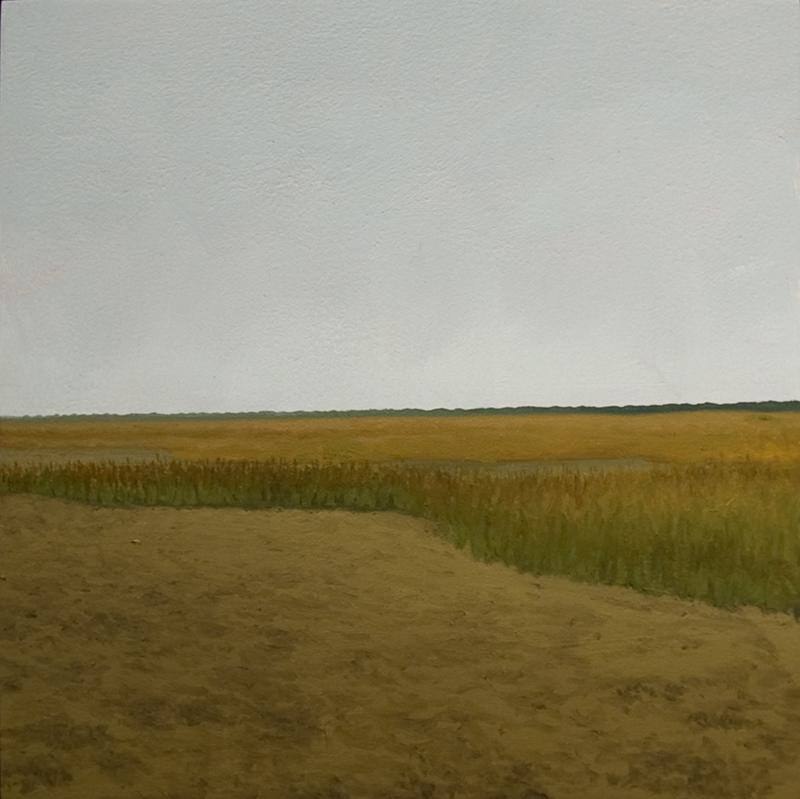 os 2 (tidal flat: goat island, sc)