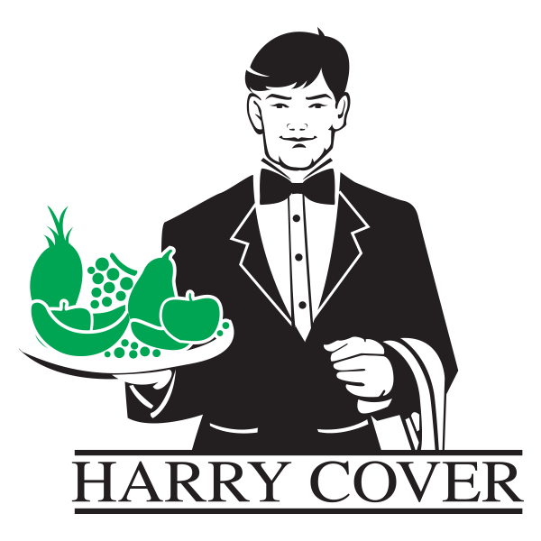 Sac-de-Pub-Reference-Harry-Cover.png