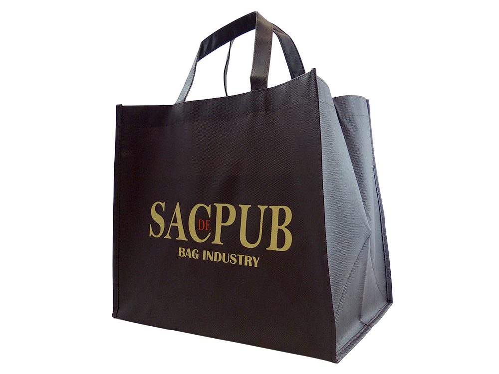 Sac-de-Pub-Modele-Shopping-2.png