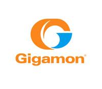 Gigamon.jpg