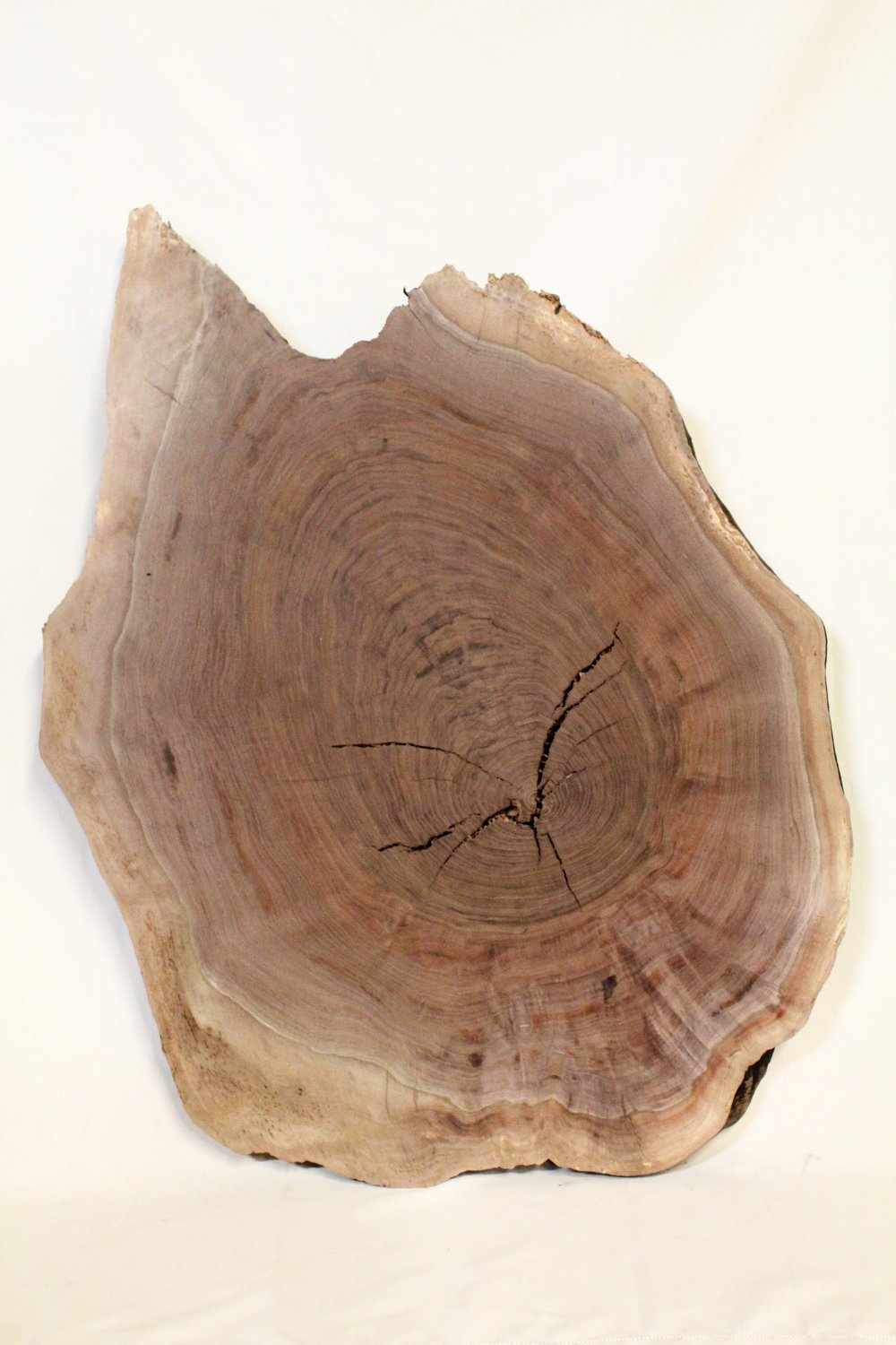 """Walnut 3   This is a round Western Black Walnut that is 29"""" x 42"""". This would make a great small coffee table or end table.    See more"""