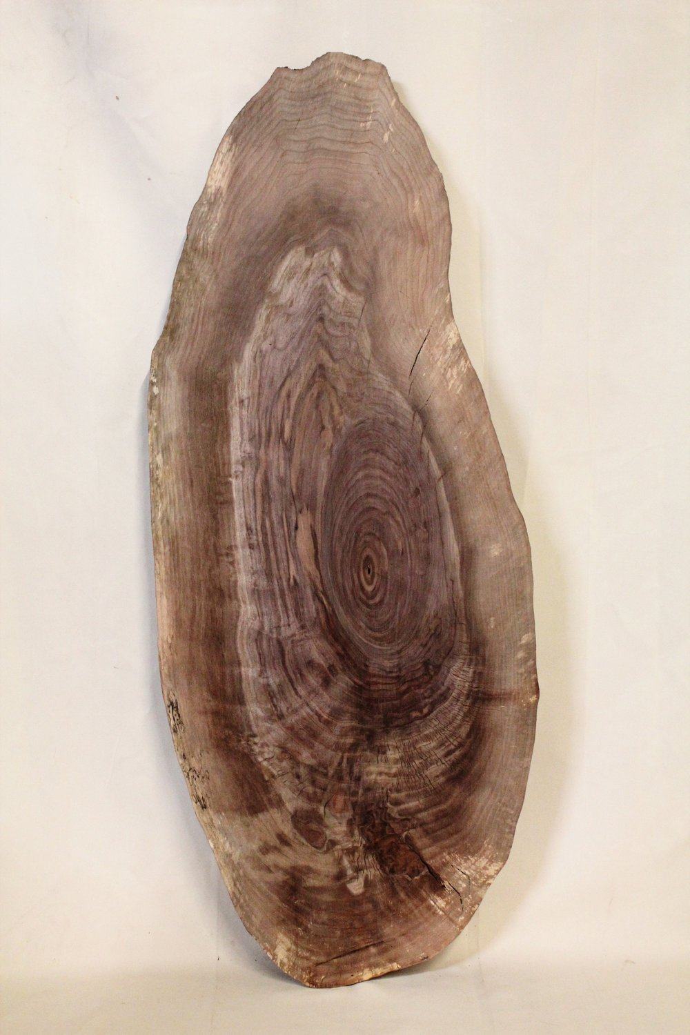"""Walnut 1   This is an oyster shaped 19"""" x 47"""" slab of Western Black Walnut. This would make a great smaller coffee table or large end table.    See more"""