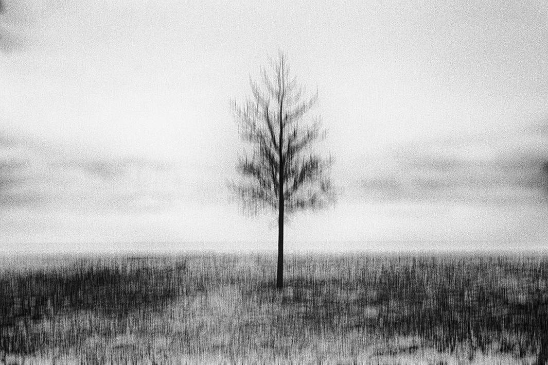 © Bastiaan Woudt