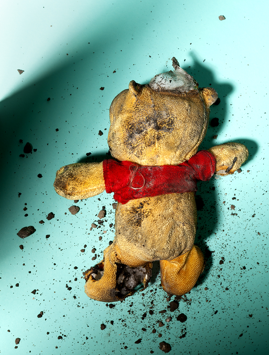 2017 Esther Cappon - The day Pooh died