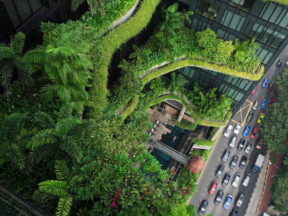 Esme-Swimming-Parkroyal-on-Pickering-Singapore-C-Lucas-Foglia-Courtesy-of-Michael-Hoppen-Gallery.jpg