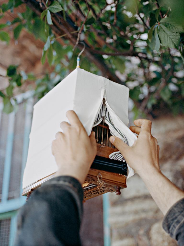Maria_Sturm_FOR-BIRDS-SAKE_01.jpg