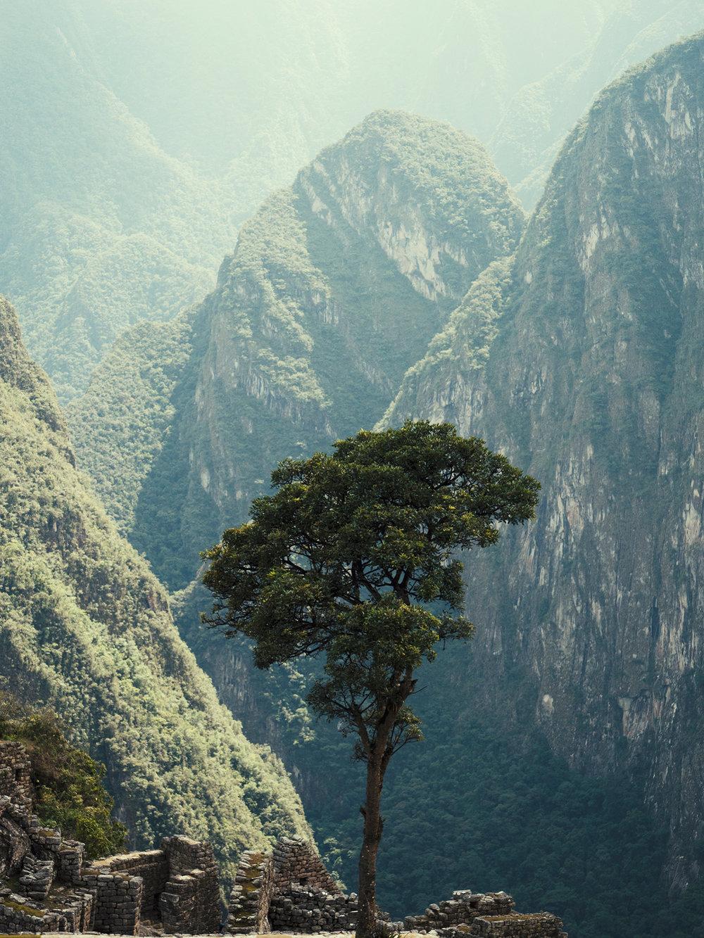 Andes gebergte Peru, november 2017 © Willem SIzoo