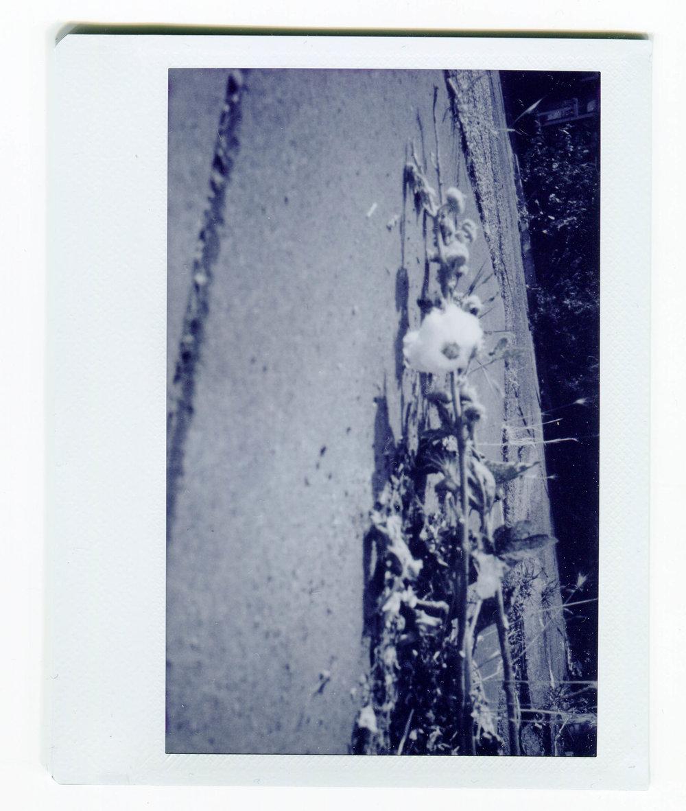 Parijs_Hanne Postma_13.jpg