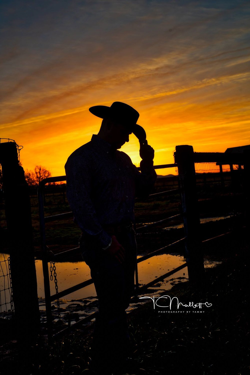 California Cowboy.  Taken in Lodi, California at West 12 Ranch.