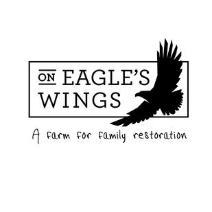 eagles-wings_1.png