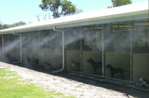 kennel misting - Copy.jpg