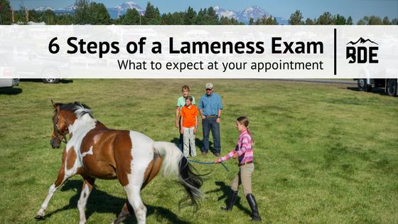 Lameness_6 Steps.png