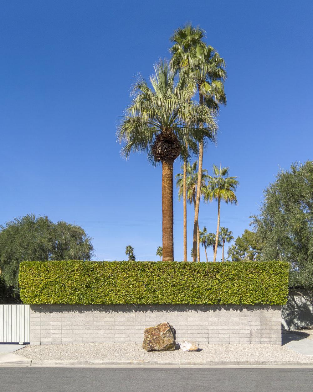 Rock - Paper - Palm Tree