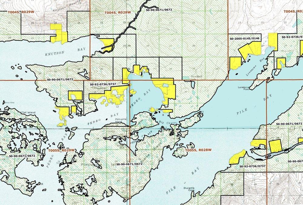 PEDRO BAY map.jpg
