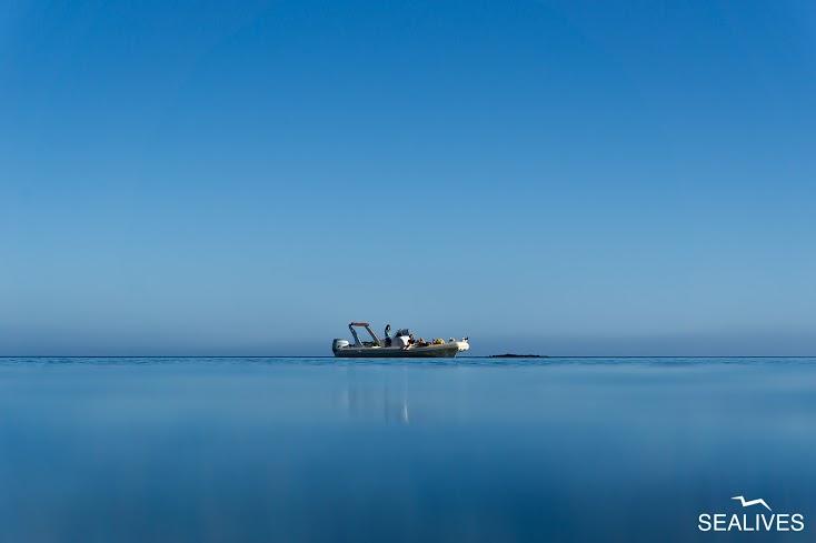 blu blue bleu blau blauw blå - Sardinian sea