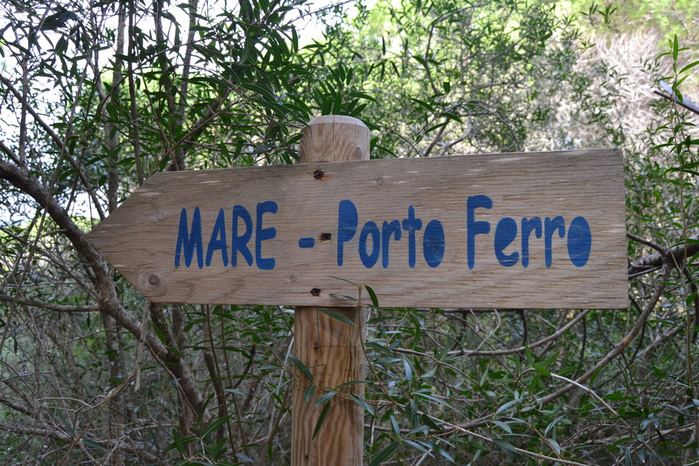 Searching for Porto Ferro