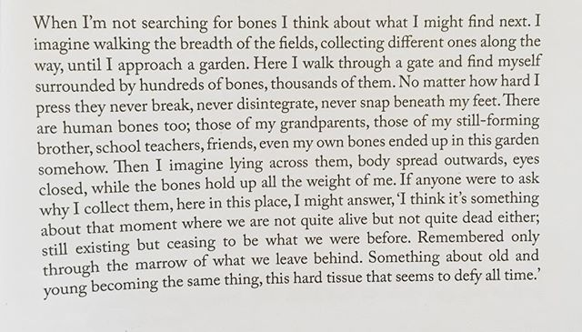 The last paragraph in 'The Bone-Field', the final piece of prose poetry in my second collection All The Journeys I Never Took. #poetry #poet #poetsofinstagram #poetrycommunity #spokenword #writing #creative #creativewriting #bones #time #pastpresentfuture #everythingcomesfullcircle #birthlifedeath