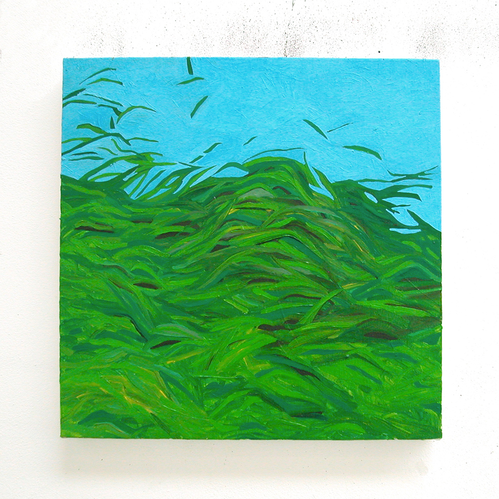 Grasssy, 2007  oil on canvas  40 x 40 cm