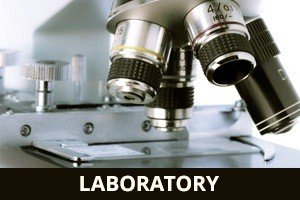 DZI Construction, Inc. Laboratory Builder