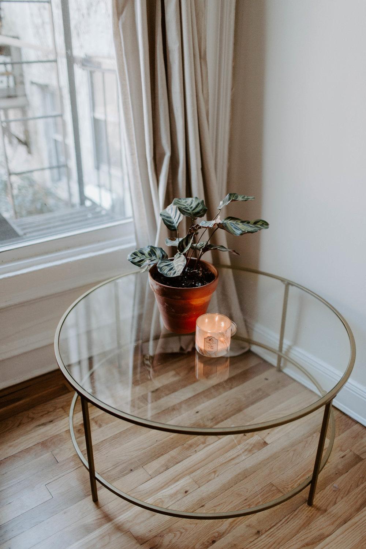 Cobble_Hill_Brooklyn_Apartment_Tour13.jpg