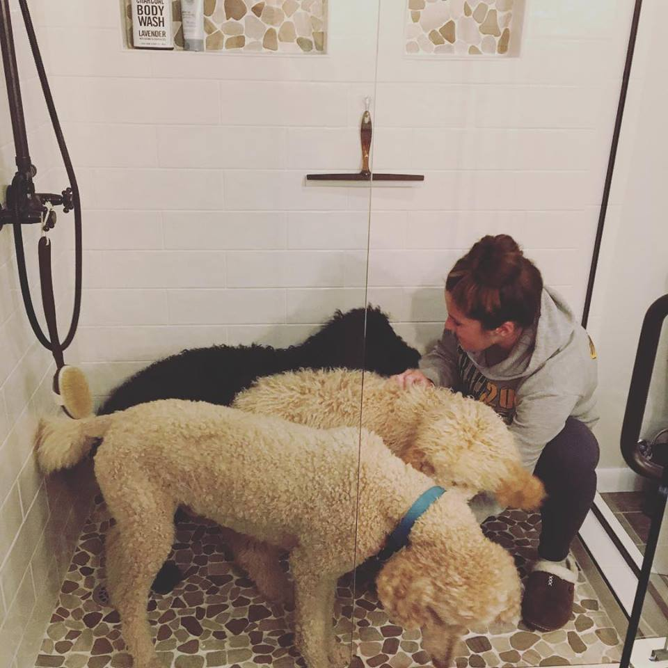 Customer Sent Photo In New Shower With Dogs, Shower Glass installed by us.