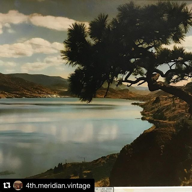 4th Meridian Vintage and Auctions have some fantastic hand-tinted photos at their shop in Penticton, BC. This photo from ca. 1930 of Skaha Lake is iconic. The tree was there for years before some kids set fire to it. #sillykids #lumbstocks #pentictonbc #handtintedphotography #skahalake #okanaganlife @4th.meridian.vintage @4th.meridian.auctions @feckless_artcollector