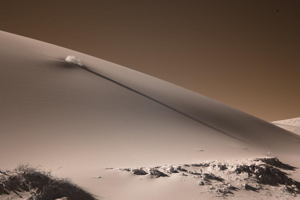 The sand dunes of Sossusvlei.