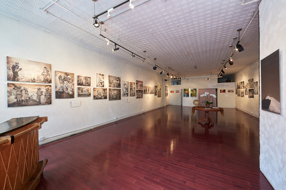 TerriGold_exhibit Salomon arts Gallery.jpg