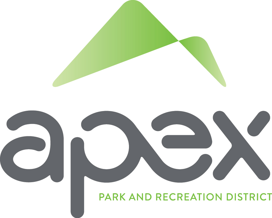 APEX FULL COLOR GRADIENT LOGO WITH TAGLINE CMYK.jpg