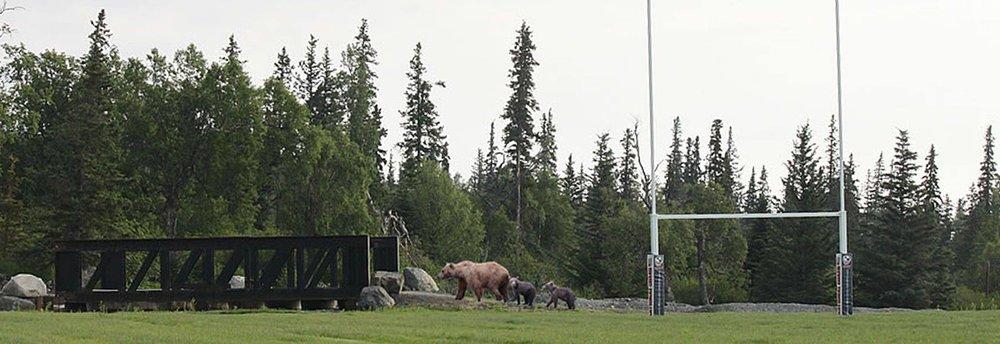AK Rugby.jpg
