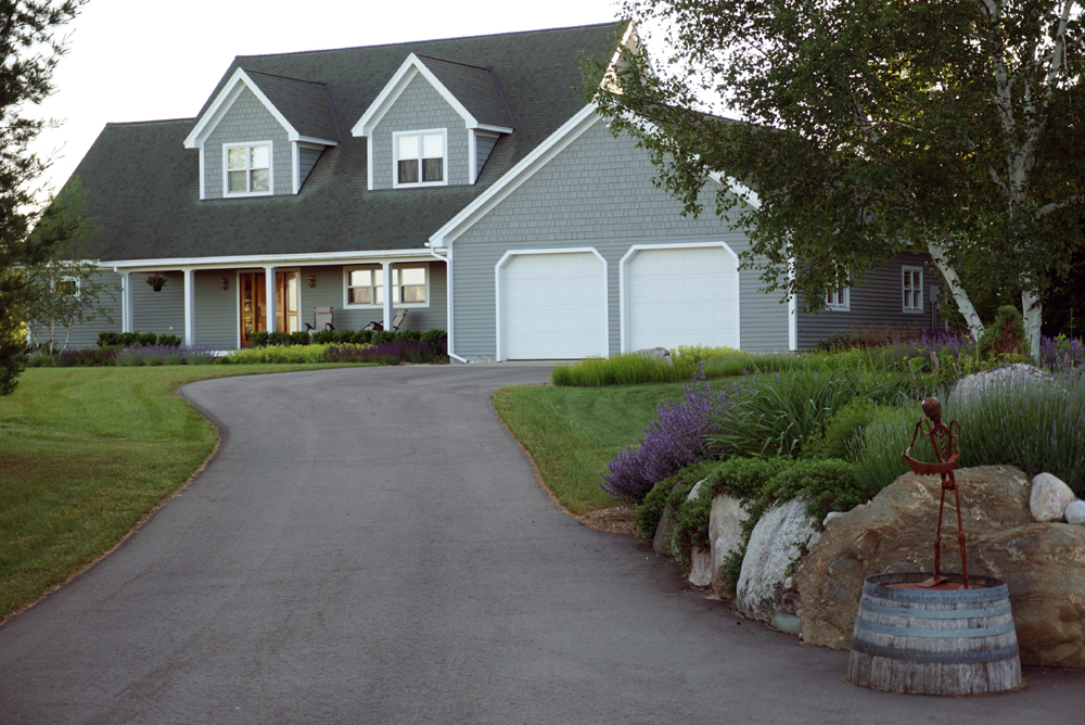Front landscaping bed with birch tree and lawn landscaping services