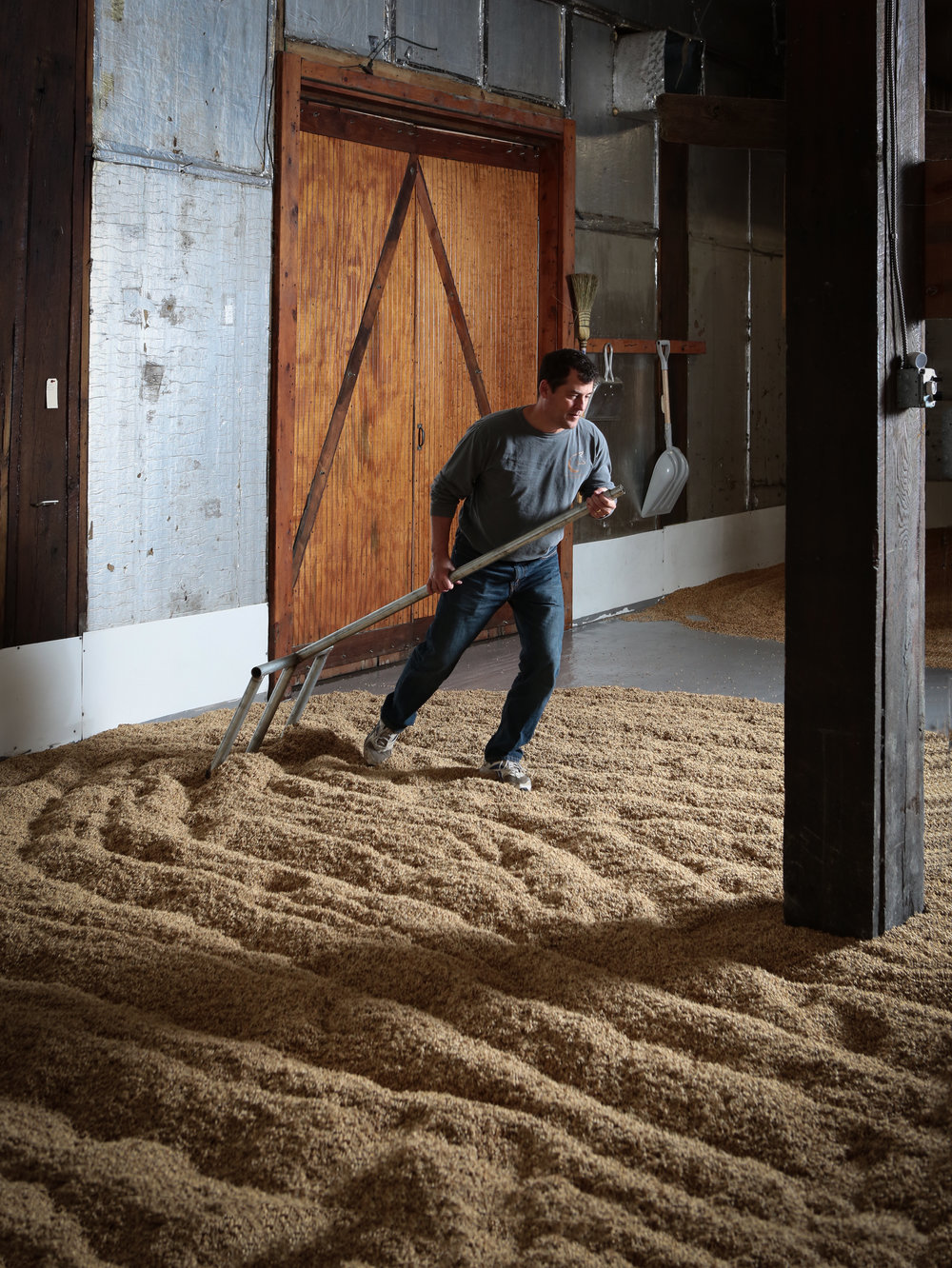 Rick Wasmund rakes the barley in the floor malting process.