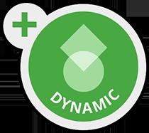 Dynamic Certified