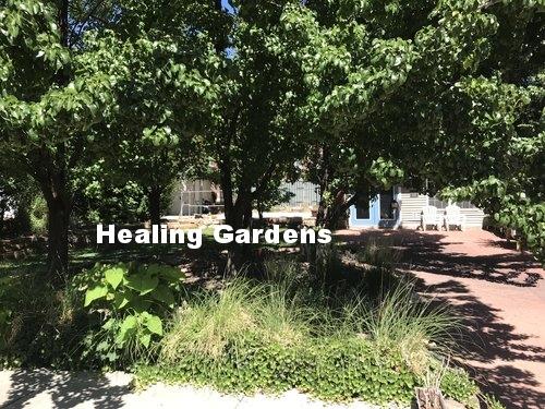 healing gardens.jpg