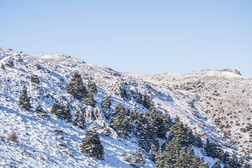 La Sierra de las Nieves se convierte a parque Nacional