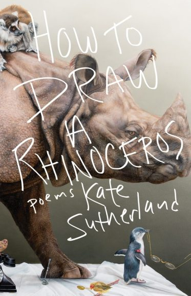 How-to-Draw-a-Rhinoceros