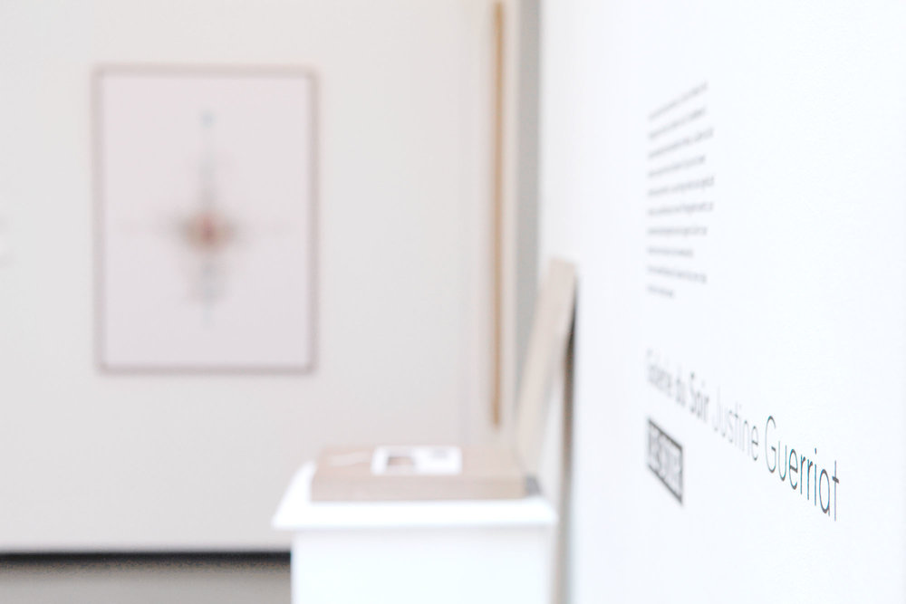 Justine Guerriat_Musée de la Photographie, Charleroi, 2014-2015_002.jpg
