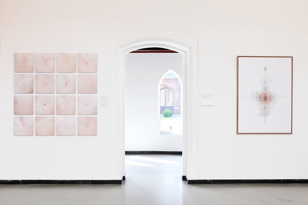 Justine Guerriat_Musée de la Photographie, Charleroi, 2014-2015_004.jpg