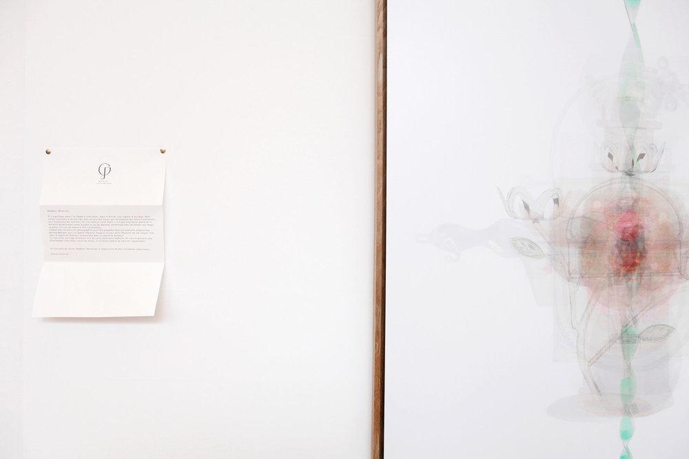 Justine Guerriat_Musée de la Photographie, Charleroi, 2014-2015_005.jpg
