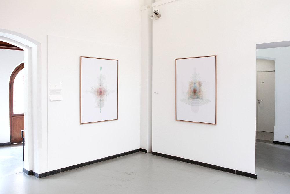 Justine Guerriat_Musée de la Photographie, Charleroi, 2014-2015_003.jpg