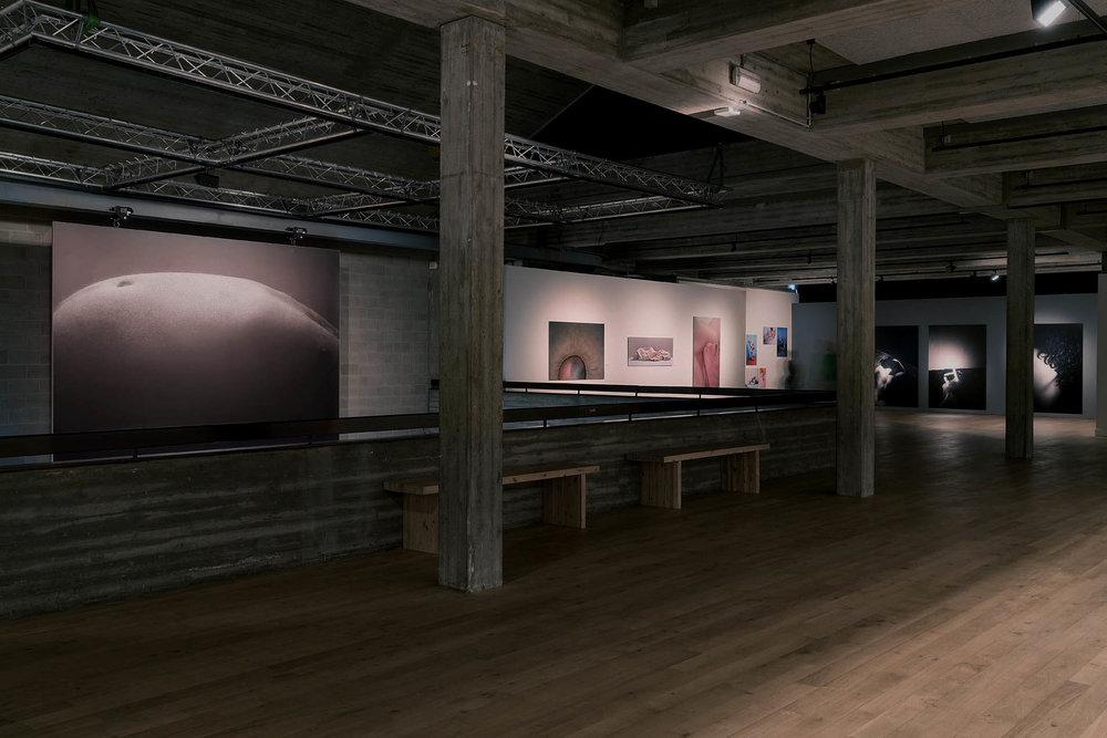 Justine Guerriat_Cultuurcentrum Scharpoord_Unknown Masterpieces_2016_01.jpg