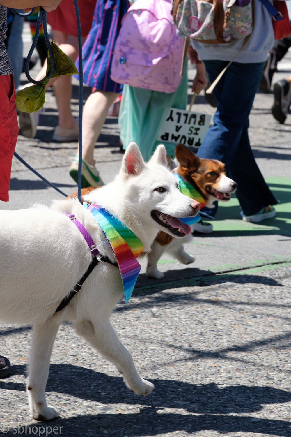 pride-2017-seattle-29-of-52.jpg