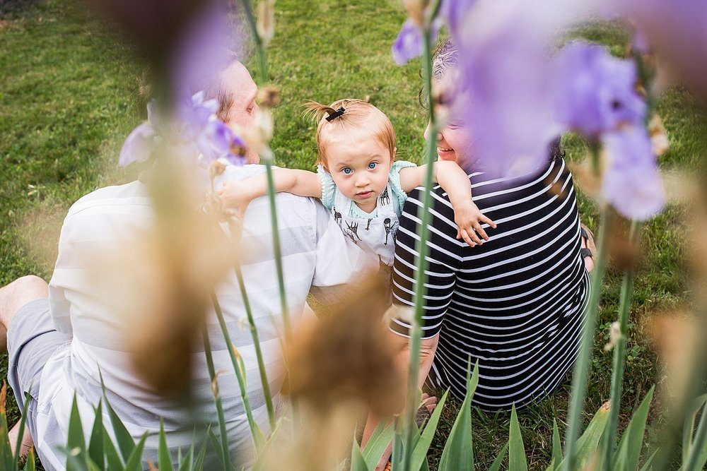 Photo of a little girl peeking through some purple iris flowers.