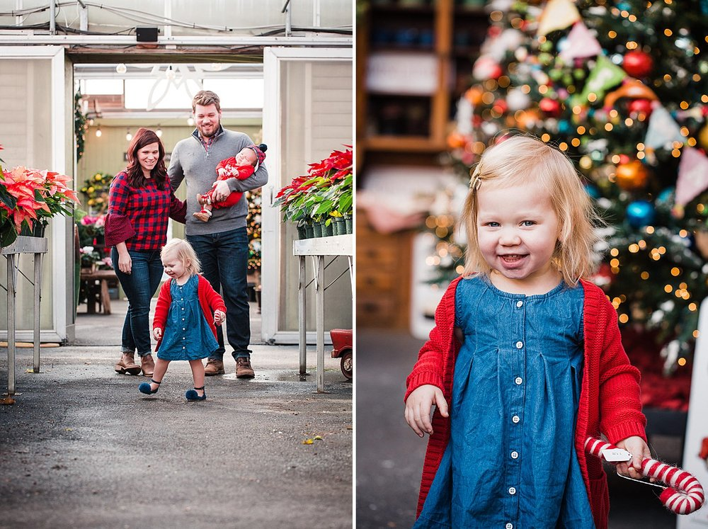freys_greenhouse_christmas_mini_session_photography_17.jpg