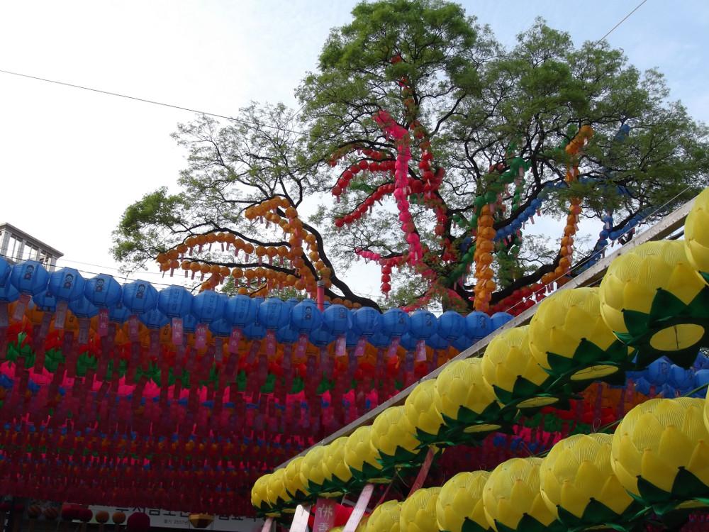 10-Lanterns-on-tree.jpg