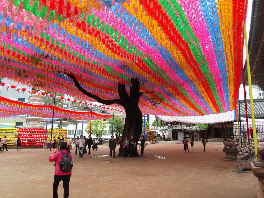 13-Lantern-Rainbow-Tree.jpg