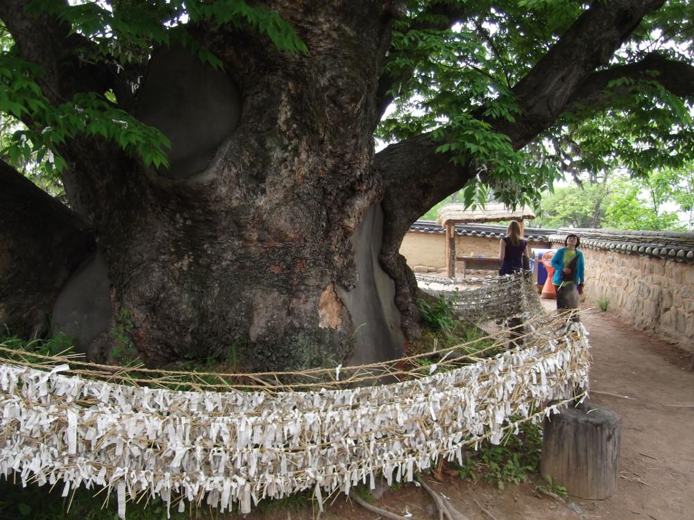 40-Goddess-Tree.jpg