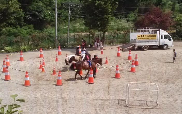 More-ponies-e1373805179236.jpg