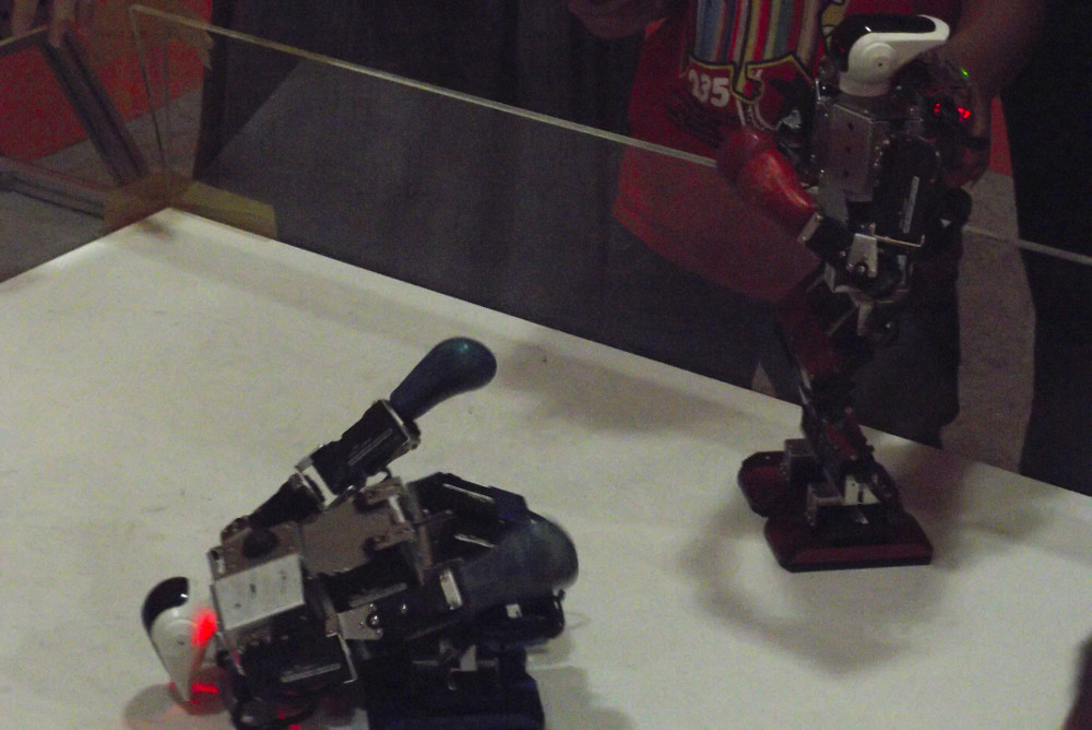 Kung-Fu-Robots-in-Defeat.jpg