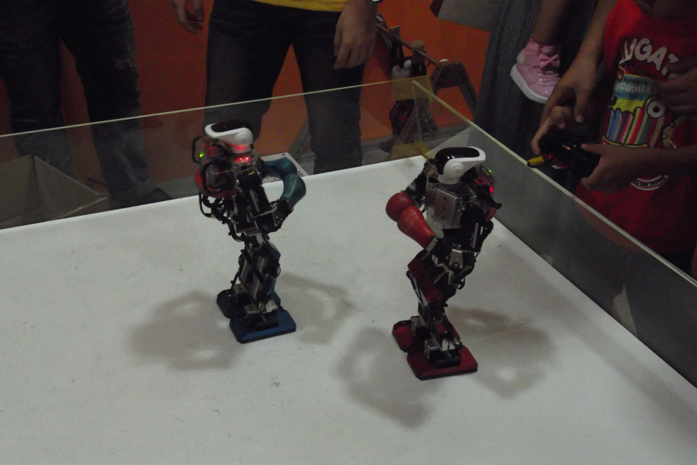 Kung-Fu-Robots.jpg